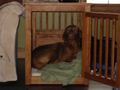 Customer Photo Custom End Table dog Crate